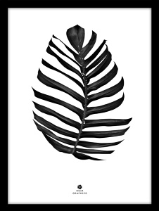 Interiør Plakat Jungle Leaf Black