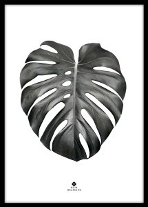 Interiør Plakat Monstera Leaf Black