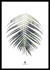 Poster art Plakat Palm Leaf