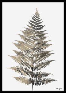 Poster art Plakat Fern One