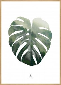 Monstera leaf Oak frame