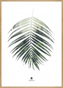 Palm leaf Oak frame
